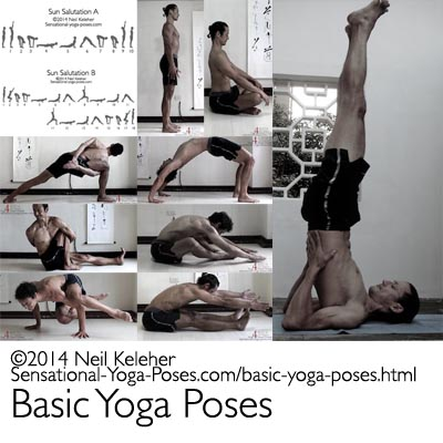 basic yoga poses including sun saluations, standing poses, seated poses, binding poses, twists, arm balances, backbends, forward bends and hamstring stretchest and inversions like shoulderstand. Neil Keleher. Sensational Yoga Poses.