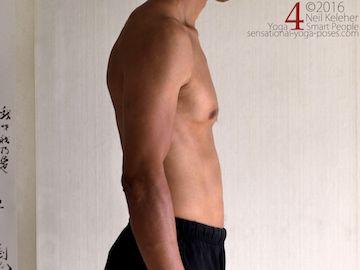 breathing anatomy for yoga teachers