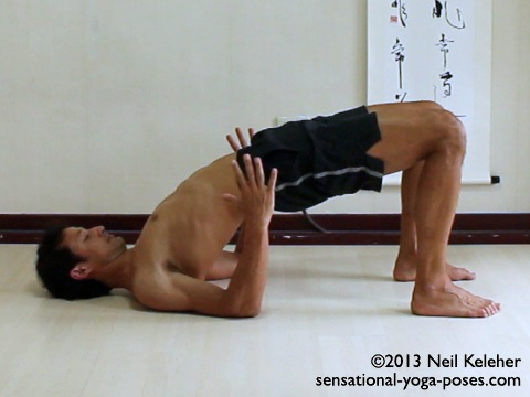 In this version of the back bending yoga pose called bridge pose, the elbows are bent and on the floor with forearms vertical. Press the feet into the floor to lift the hips (shins vertical). Then press the elbows into the floor to help open the chest. You may find that it feels nice to spread and lengthen the fingers.