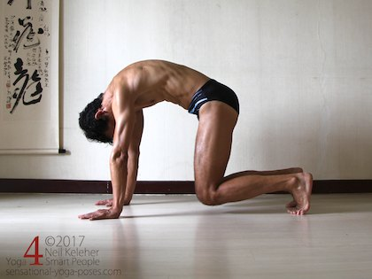Forward bend for the spine on all fours with knees lifted, dog pose. Neil Keleher. Sensational Yoga Poses.