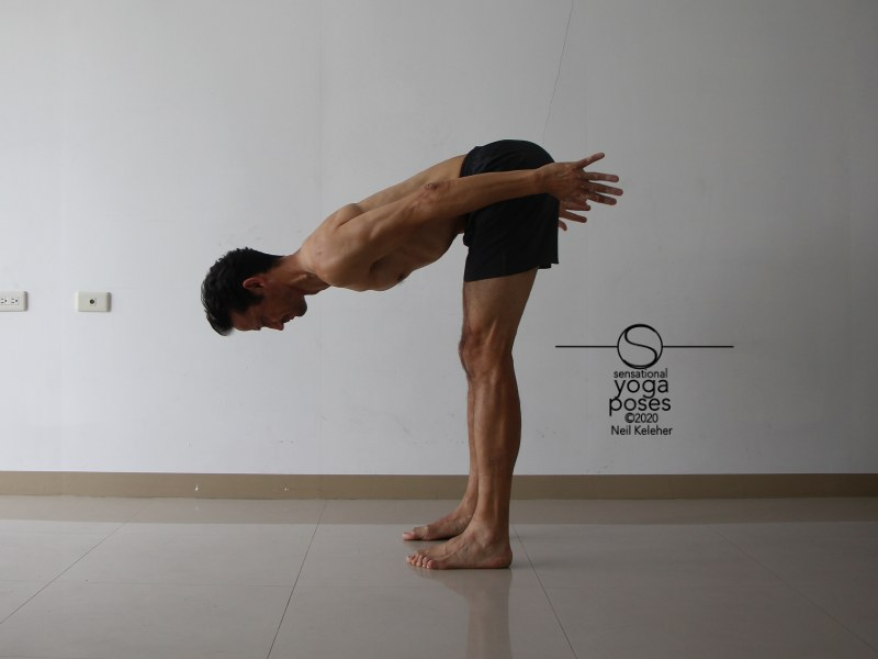 In standing forward bend you can create a downwards pull on your sitting bones to activate your hamstrings. Neil Keleher, Sensational Yoga Poses.