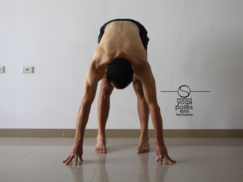 Standing forward bend with feet parallel. Neil Keleher, Sensational Yoga Poses.