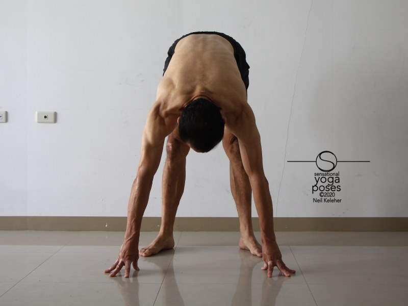 Standing forward bend with feet turned out. Neil Keleher, Sensational Yoga Poses.