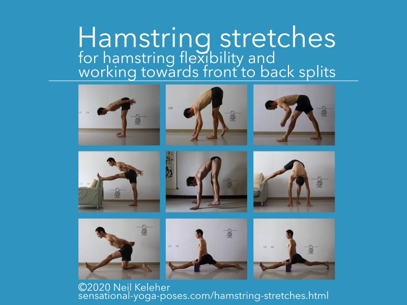 A selection of hamstring stretches for working towards the splits. Neil Keleher, Sensational Yoga Poses.