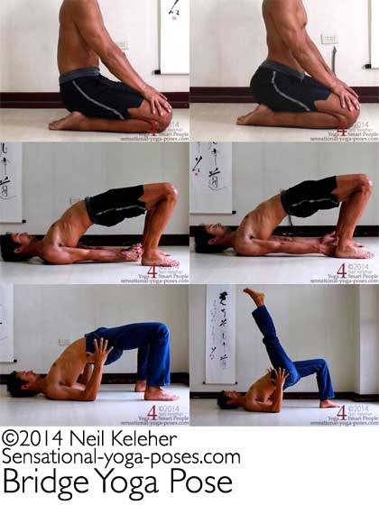bridge yoga pose mosaic, bridge pose with hands clasped, hands pressing outwards against feet, bridge with elbows bent and forearms vertical, bridge pose with one leg lifted. neil keleher, Sensational Yoga Poses