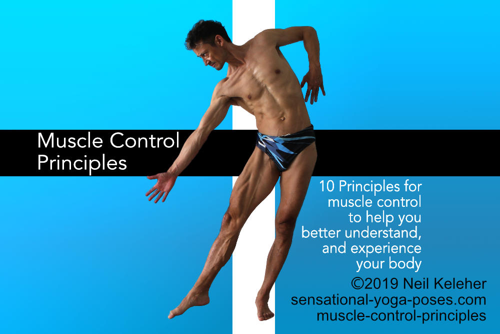 Muscle Control principles. Here you can see the following muscles activated: sartorius, vastus medialis, vastus intermedius, the adductors, gastrocnemius... Neil Keleher, Sensational Yoga Poses.
