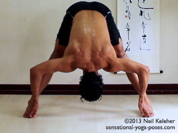ashtanga yoga poses 1
