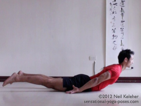 In locust pose lay on the belly with the hands back. Lift your head and then bend your thoracic spine backwards to lift the ribcage. Lift your legs also while keeping the knees straight. In this backbending yoga pose you can feel your spinal erectors and back of the thighs activating.