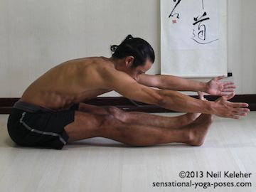 In seated forward bend, you can sit with legs parallel and knees straight. Tilting forwards at the hips, make the spine long (from tailbone to crown) and reach the arms forwards. Make arms and legs and spine all feel long. Neil Keleher. Sensational Yoga Poses.