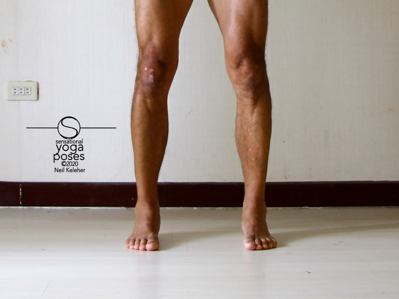 Shins rotated to neutral relative to feet. Neil Keleher, Sensational Yoga Poses.