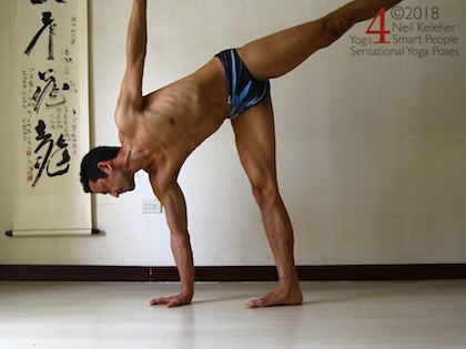 half moon with weight shifted to hand. Neil Keleher, Sensational Yoga Poses.