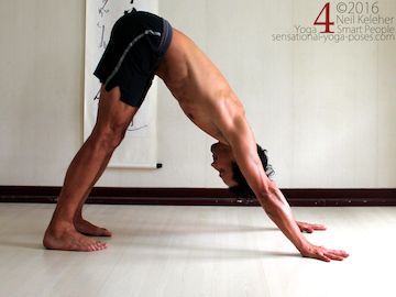 Yoga poses for ab, down dog with abs engaged, neil keleher, sensational yoga poses.