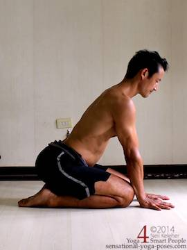 januhastasan, a kneeling posture with hands on the floor in front of the knees with spine bent backwards. This pose shows a prepatory position with hands on the floor but spine straight. Neil Keleher. Sensational yoga poses.