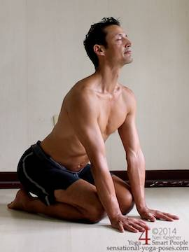 januhastasan, a kneeling posture with hands on the floor in front of the knees with spine bent backwards. . Neil Keleher. Sensational yoga poses.
